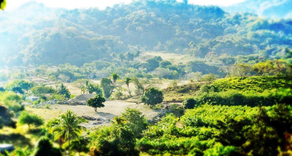 sayulita-gringo-hill