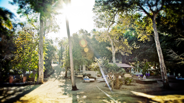 Beautiful old trees provide shade for those visiting the graveyard en route to Playa Los Muertos