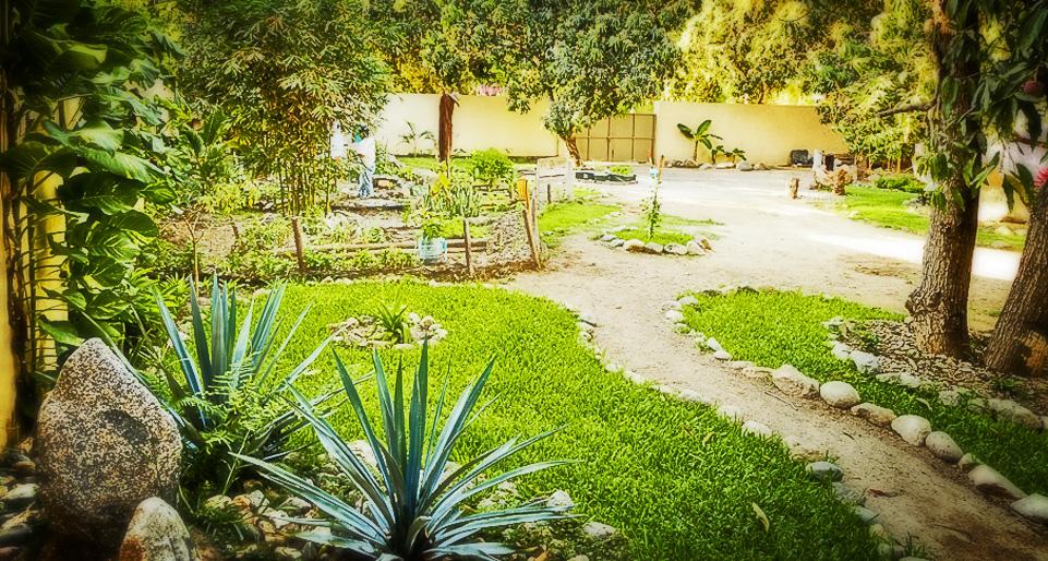 villas-sayulita-hotel-garden-01