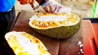 Can You Eat This Jackfruit Sayulita Beach