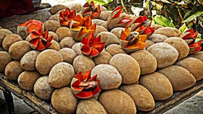Can You Eat This? Mamey Fruit | Sayulita Beach
