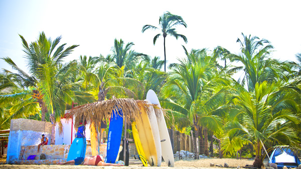 -en-surfboards-can-be-rented-by-the-campground-es-tablas-de-surf-en-renta-afuera-del-campamento-