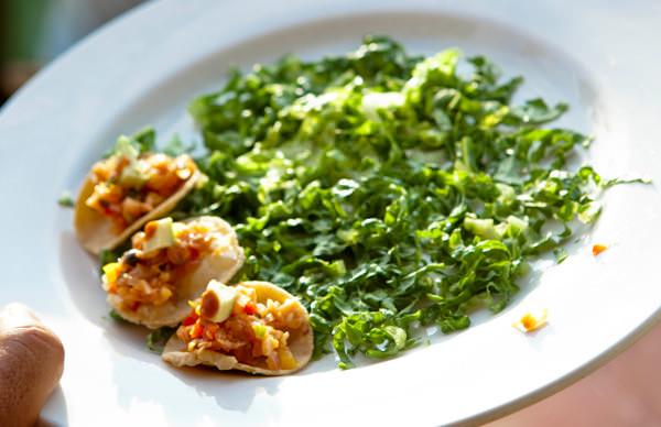-en-greens-and-ceviche-mini-tostadas-es-ensalada-y-mini-tostadas-de-ceviche-