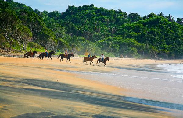 -en-horses-on-the-beach-on-beautiful-playa-escondida-es-caballos-en-la-hermosa-playa-escondida-