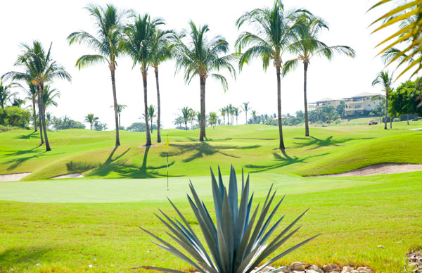 -en-punta-mita-contains-a-pair-of-world-class-golf-courses-es-punta-de-mita-ofrece-campos-de-golf-de-clase-mundial-