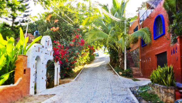 -en-colorful-homes-and-plantings-line-the-gringo-hill-streets-es-casas-coloridas-jardines-en-colina-del-gringo-