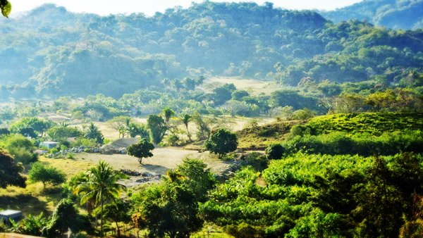 -en-the-beautiful-hills-and-valleys-that-lie-behind-sayulita-es-hermosas-colinas-y-valles-detrs-de-sayulita-