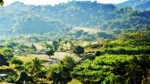 -en-the-beautiful-hills-and-valleys-that-lie-behind-sayulita-es-hermosas-colinas-y-valles-detrs-de-sayulita-
